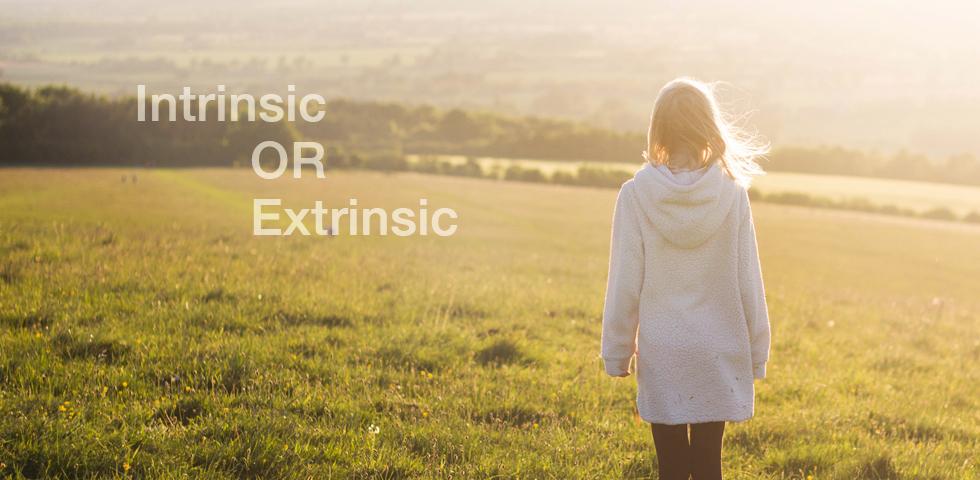 ลูกคุณเป็นเด็กแบบ Intrinsic หรือ Extrinsic แนะวิธีเลี้ยงให้ถูกสไตล์